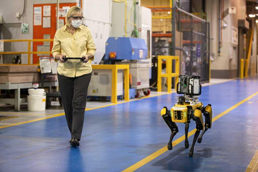 Ford pone a prueba perros robots